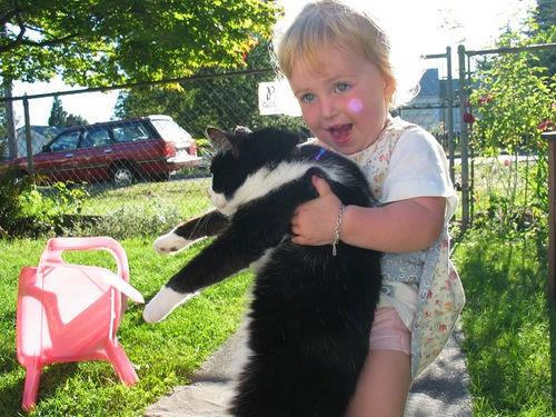 kat optillen